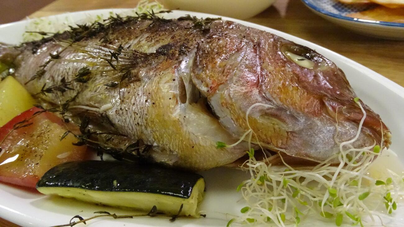 Zubatac zapečen sa povrćem i začinskim biljem